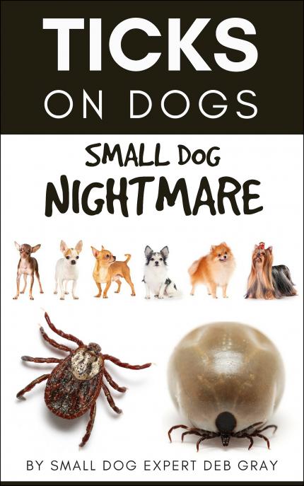 Ticks on dogs - small dog nightmare